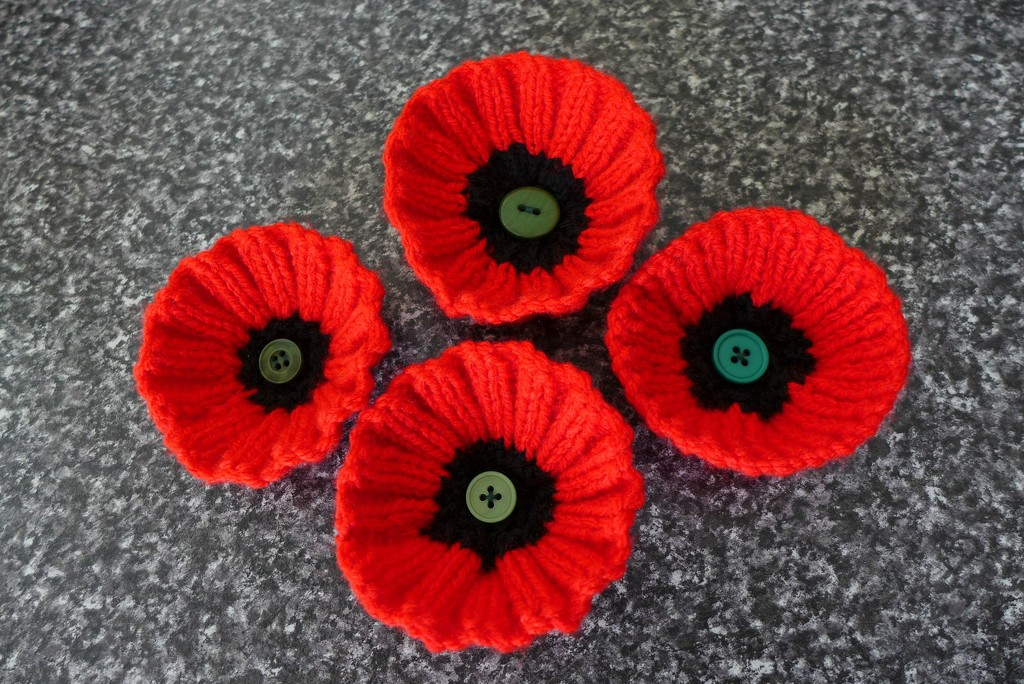 Knitted Poppies by leggzy