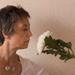 Chrysanthemum's smell awful