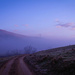 A Pastel Morning by purdey