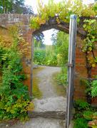 23rd Aug 2017 - A secret garden....