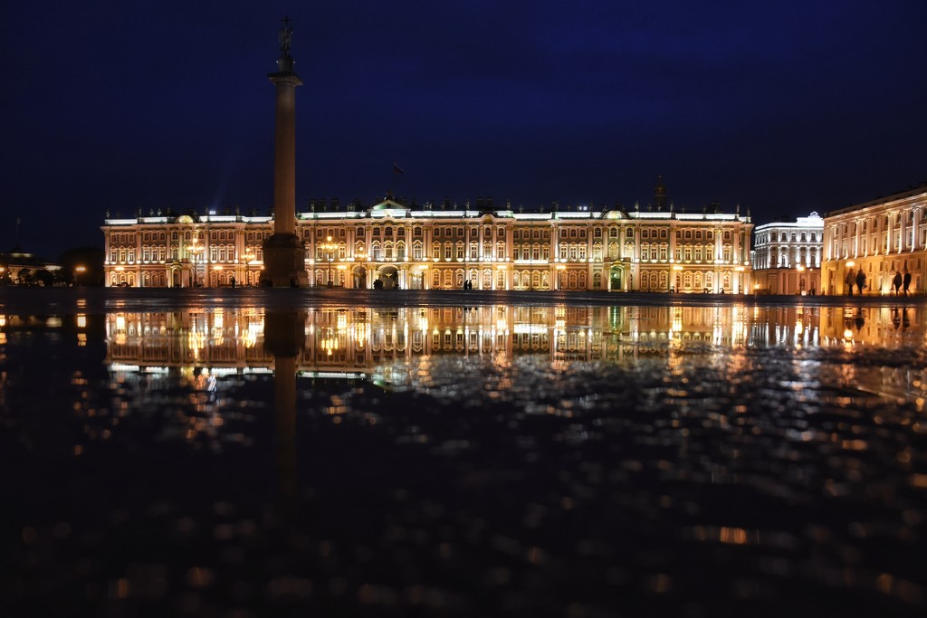 The Hermitage Museum by vera365
