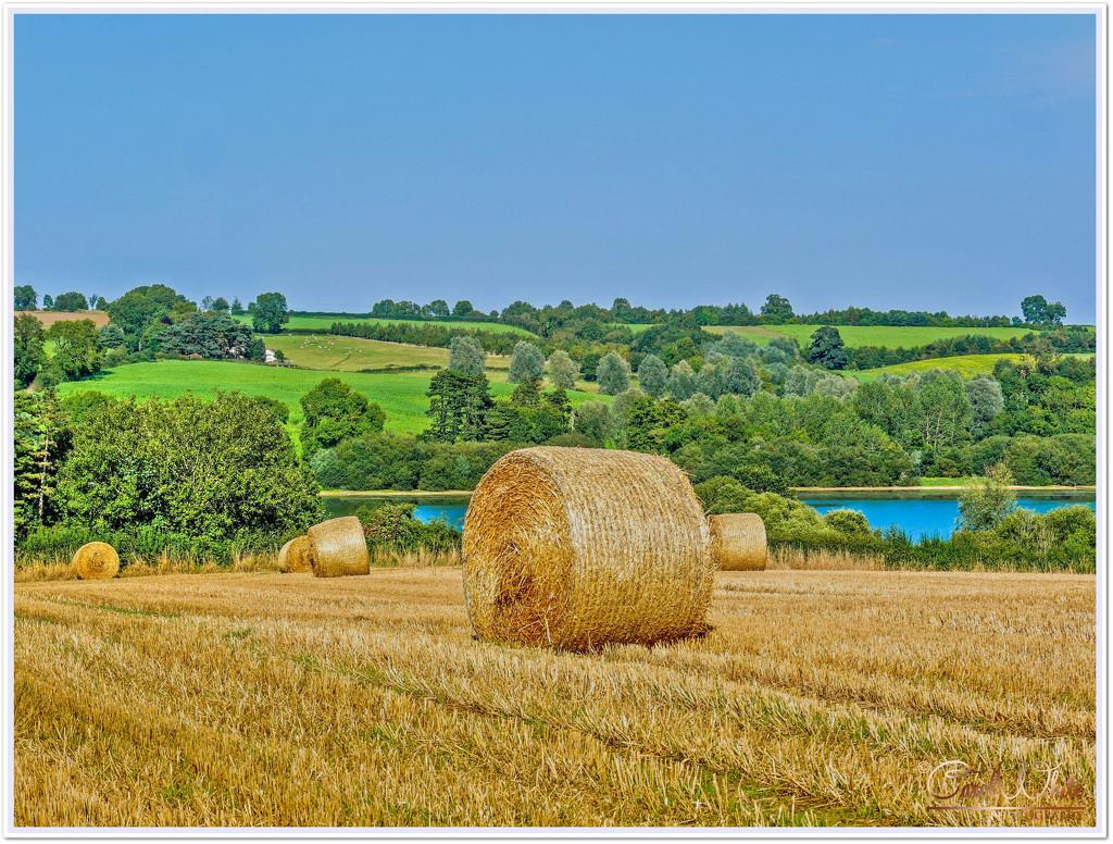 Beautiful English Countryside In Late Summer by carolmw