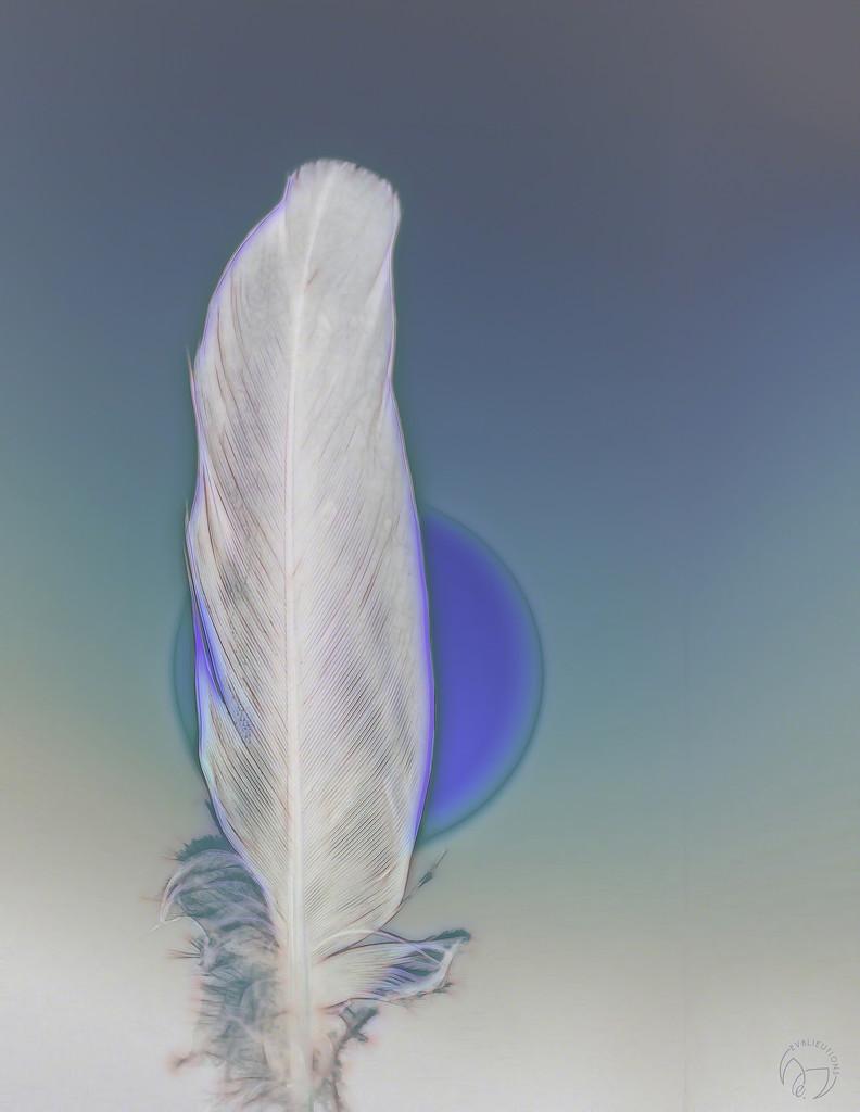 Featherlight by evalieutionspics