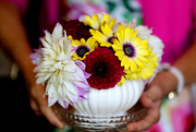 26th Aug 2017 - Bowl of Flowers