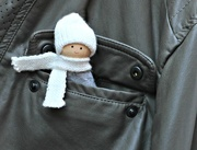 16th Aug 2017 - Dolly  in a Pocket.