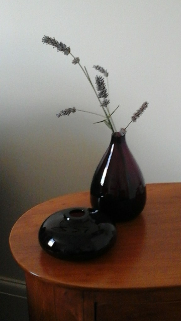 Lavender in a vase  by beryl