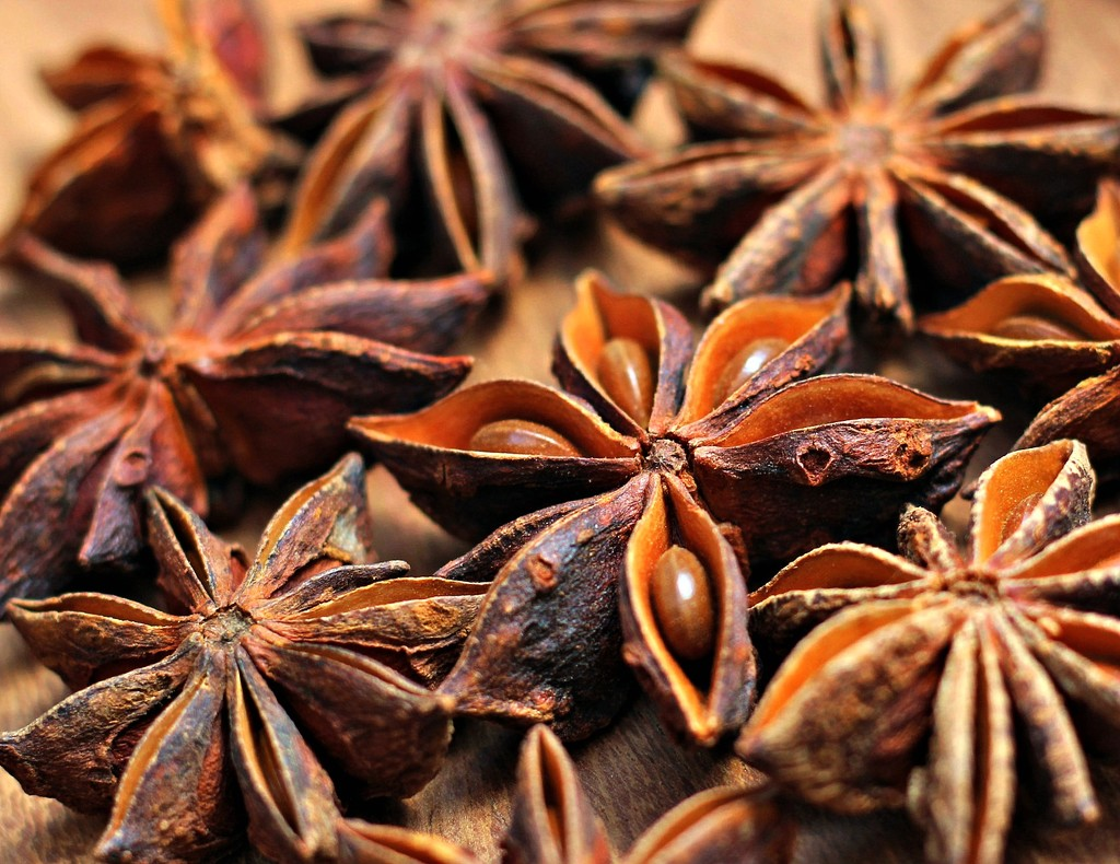 Star Anise by wendyfrost