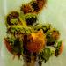 Sunflowers by farmreporter