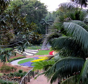 1st Sep 2017 - More tropical view of the Roma Street  Gardens