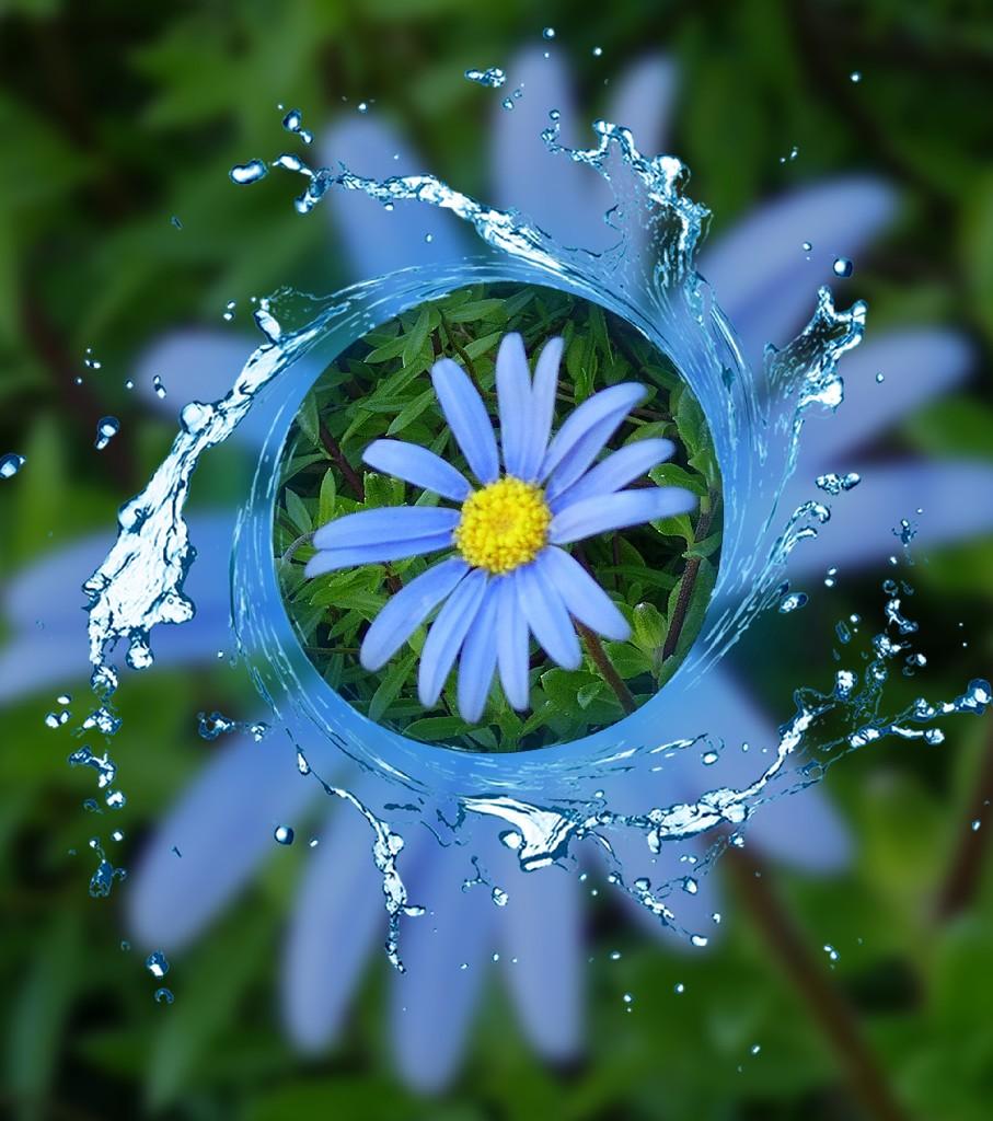 A swirl of blue. by ludwigsdiana