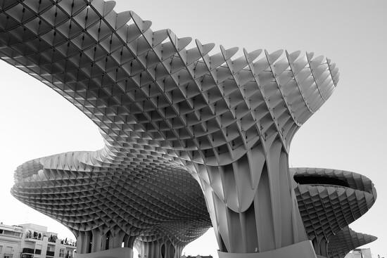 Modern Seville by ducasrouge