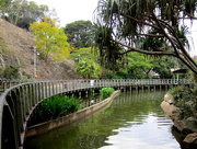 3rd Sep 2017 - Roma Street Gardens