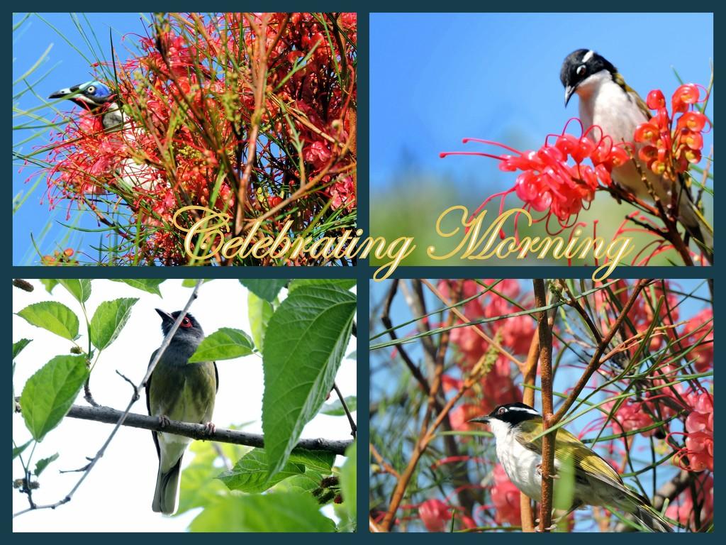 Celebrating Morning by ubobohobo
