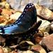 Blue Butterflies Rock by moviegal1