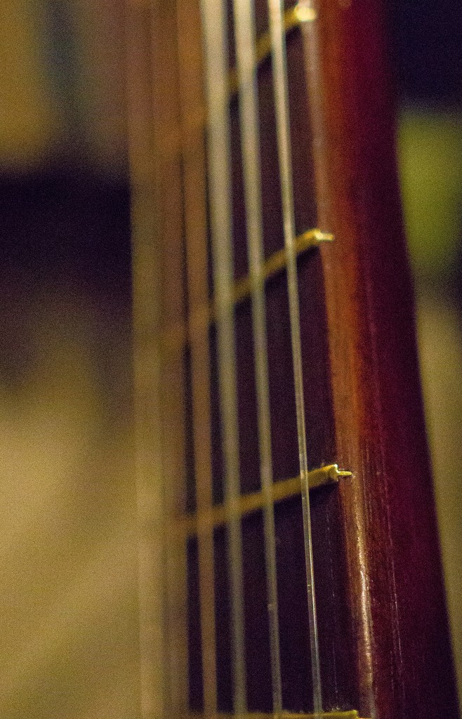 Frets and strings by cristinaledesma33
