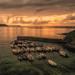 Portscatho sunrise