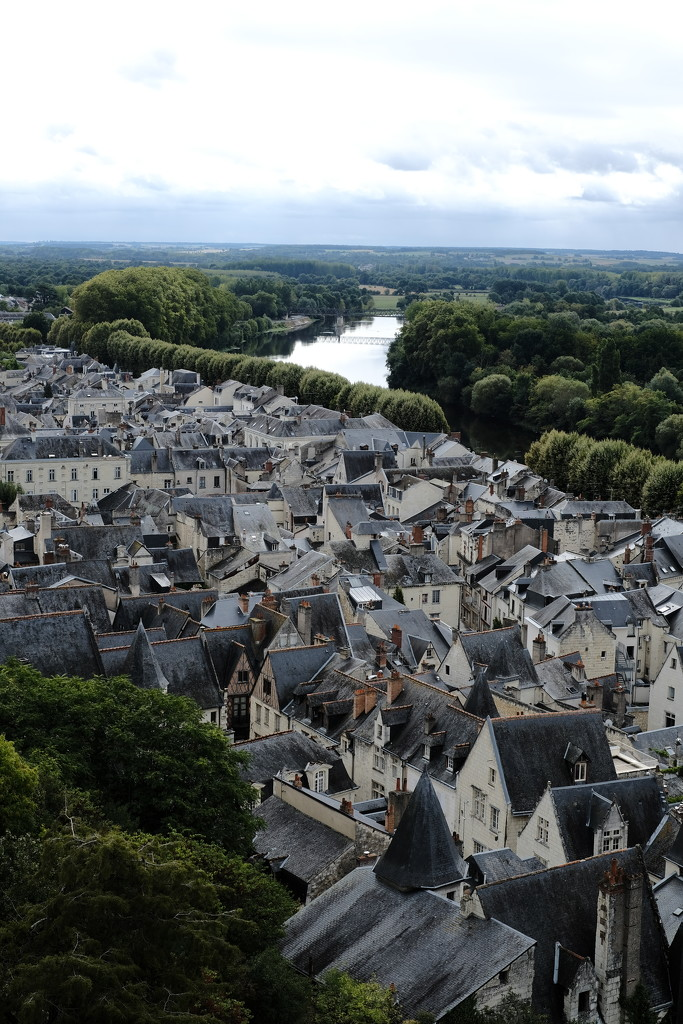NF-SOOC-2017 - Day 5: Aerial view of Vieux Chinon... by vignouse