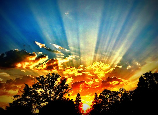 Rays Of Light by gardenfolk