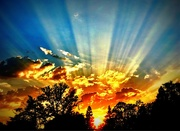 6th Sep 2017 - Rays Of Light