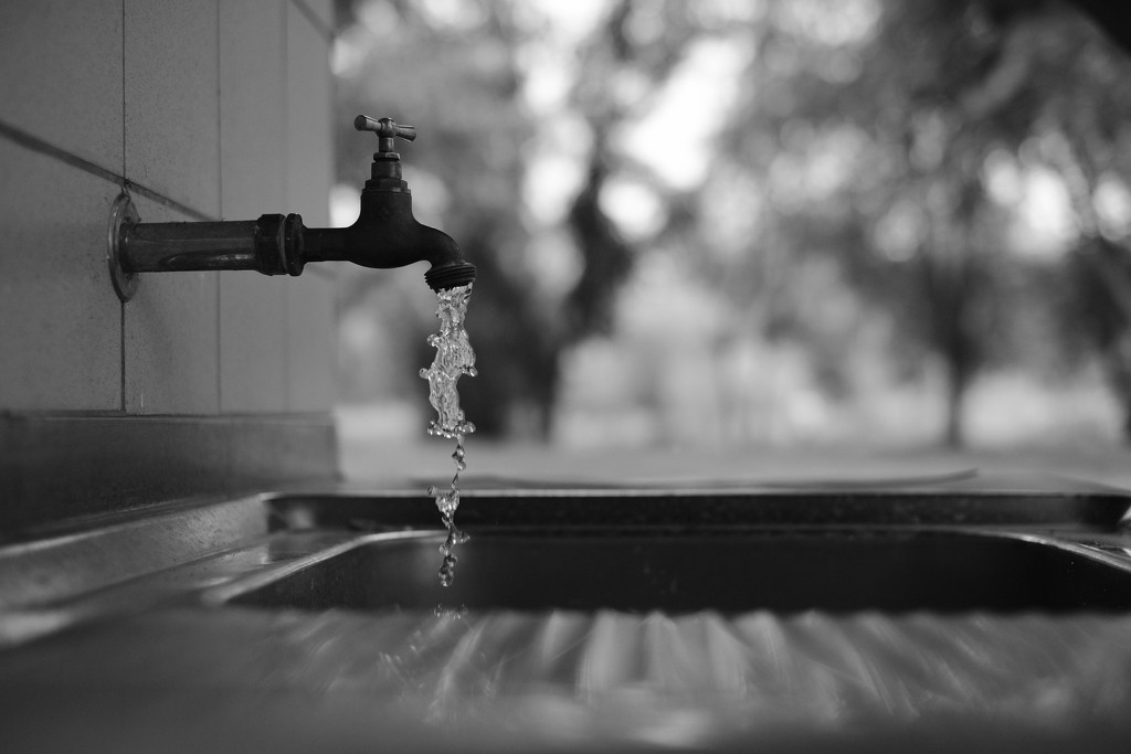 NF-SOOC-2017 - Day 6: Outside Sink by vignouse