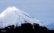 3rd Sep 2017 - Mount Taranaki