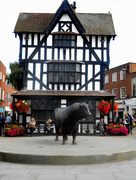 5th Sep 2017 - The Old House in Hereford market square...
