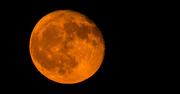 7th Sep 2017 - Orange Moon!