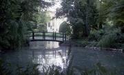 6th Sep 2017 - 9.06 Bancole di Porto Mantovano - Romantic garden