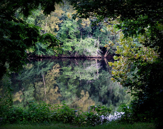 Late Summer Reflections by calm