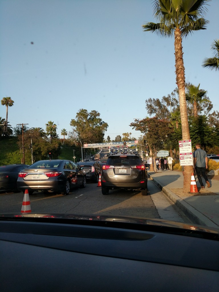 Dodger Stadium traffic by bambilee