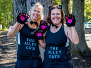 9th Sep 2017 - The Alley Cats
