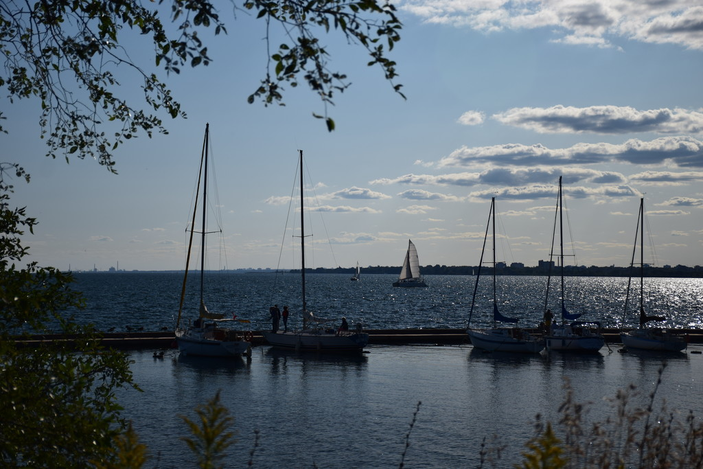 if you were a sail boat by summerfield