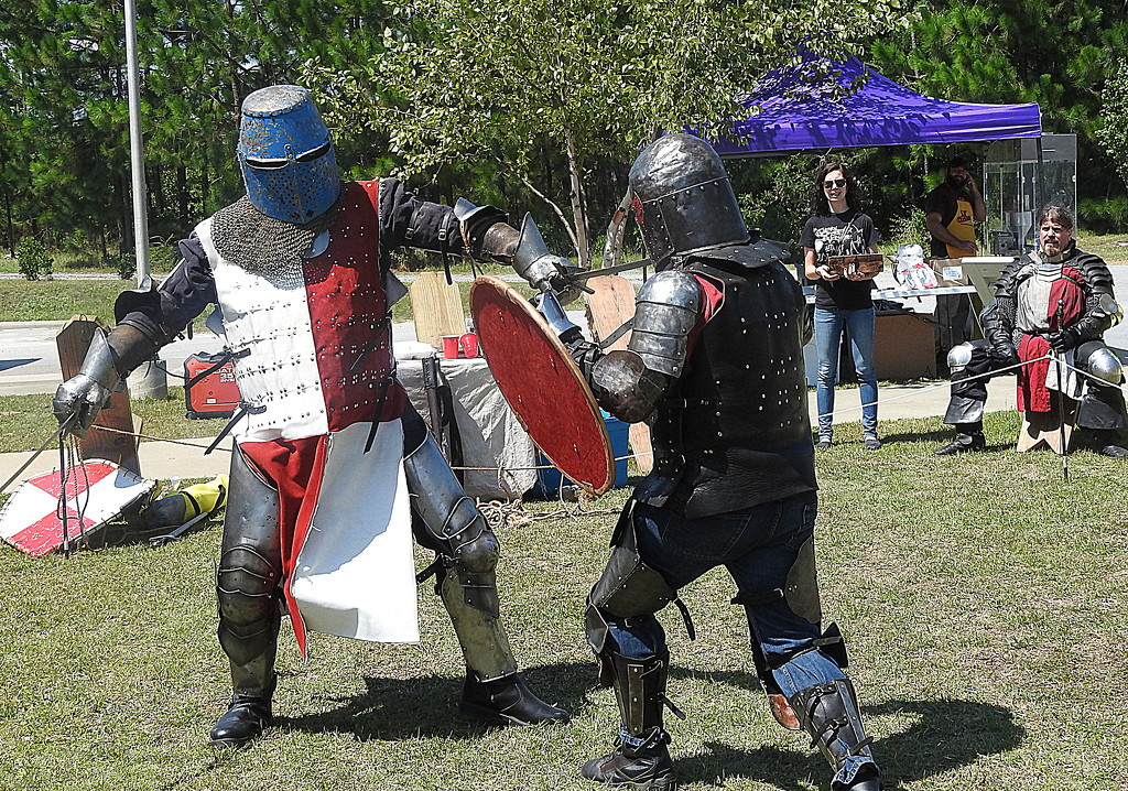 Knights in action by homeschoolmom