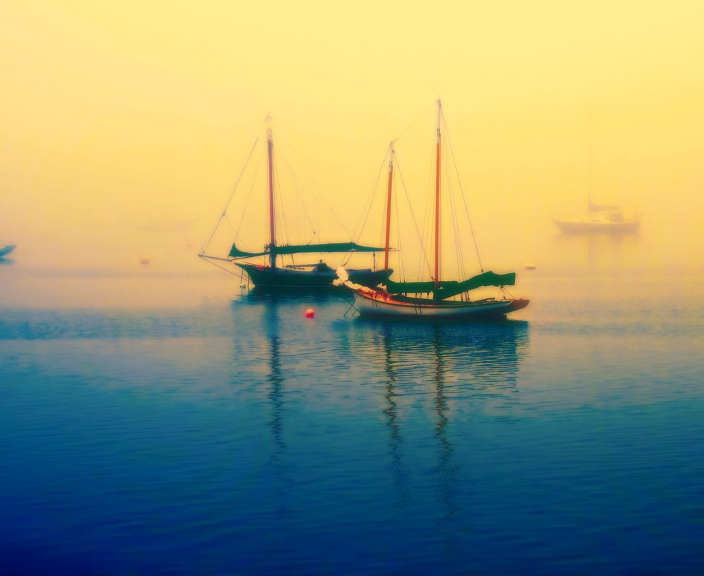 Morning Fog  by joysfocus