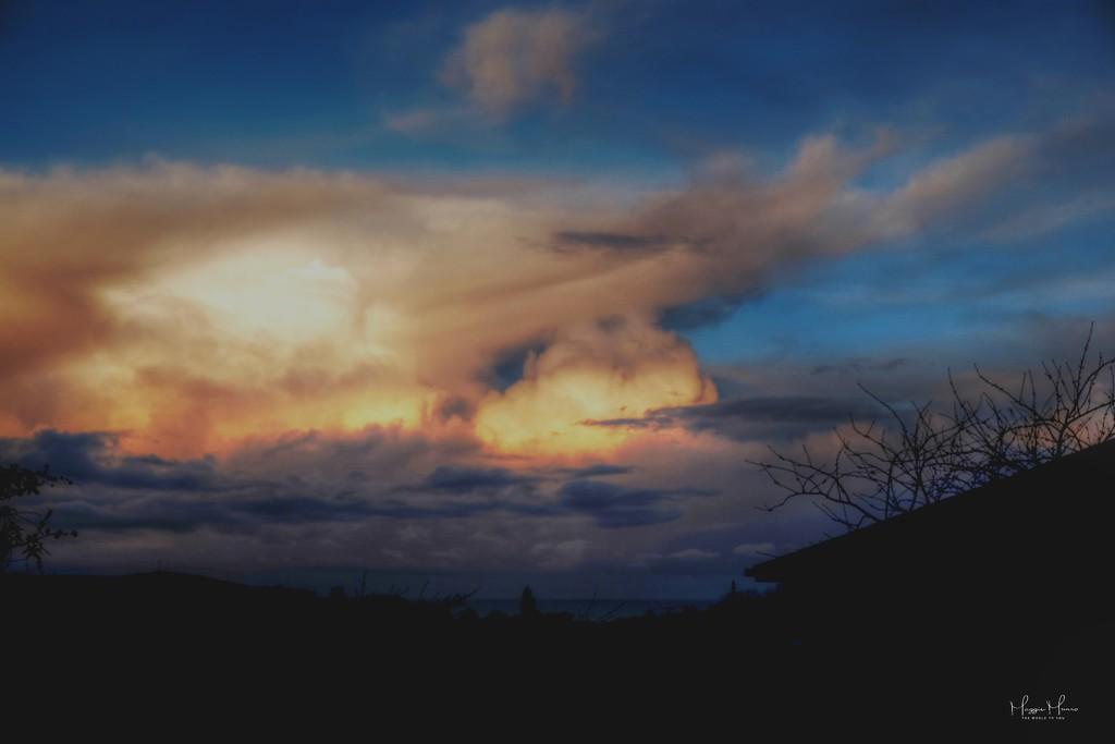 Evening Light by maggiemae