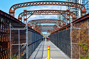 11th Sep 2017 - Meadowbank Bridge 1