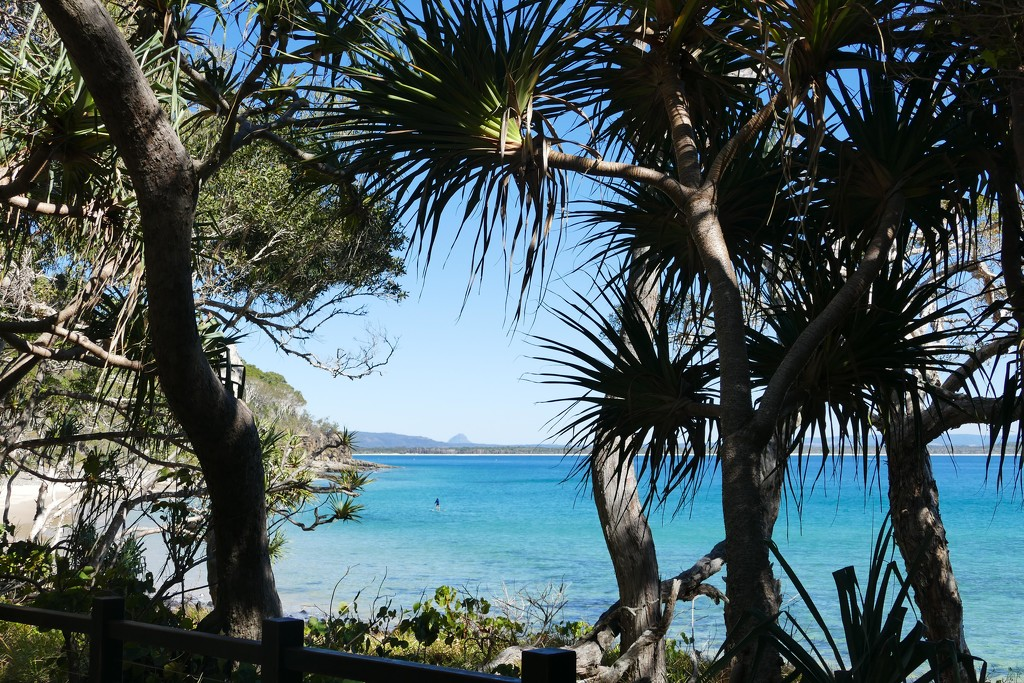 Noosa National Park by hrs