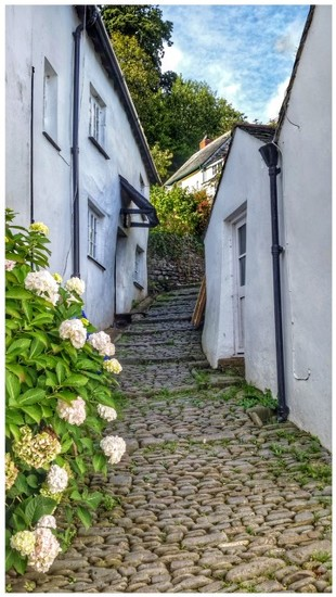 One of the quaint cobbled alleyways of Clovelly in Devon by lyndamcg
