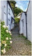 12th Sep 2017 - One of the quaint cobbled alleyways of Clovelly in Devon