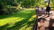 12th Sep 2017 - A walk in the park