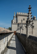 13th Sep 2017 - 253 - On the roof of the Palais des Papes, Avignon