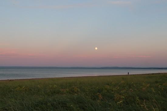 Full moon by jdraper
