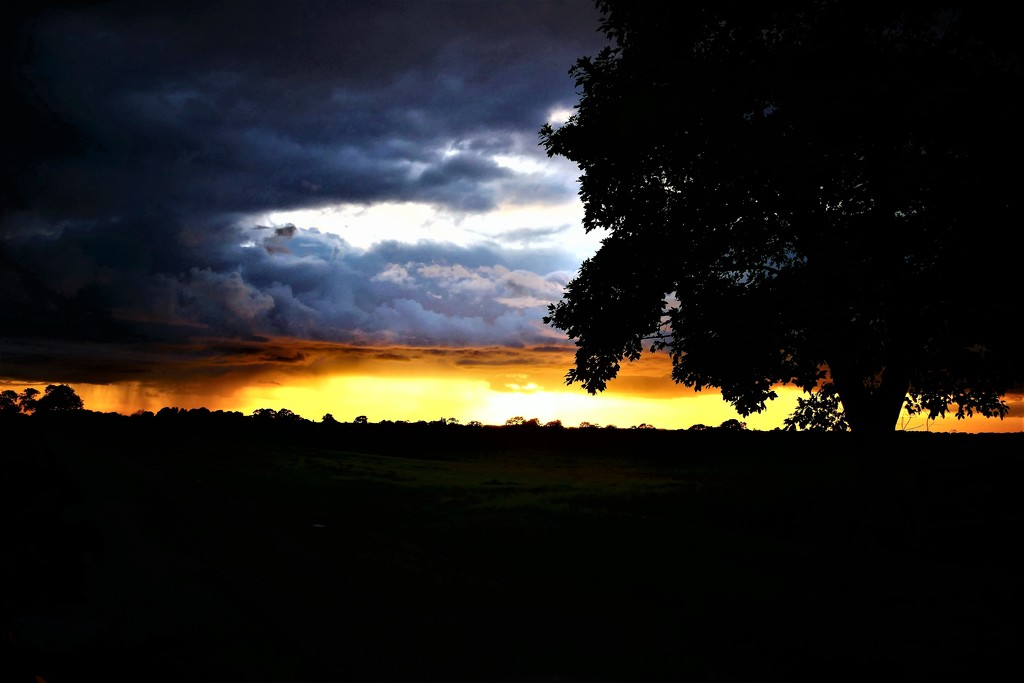 Setting Sun by carole_sandford