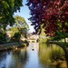 beautiful bourton