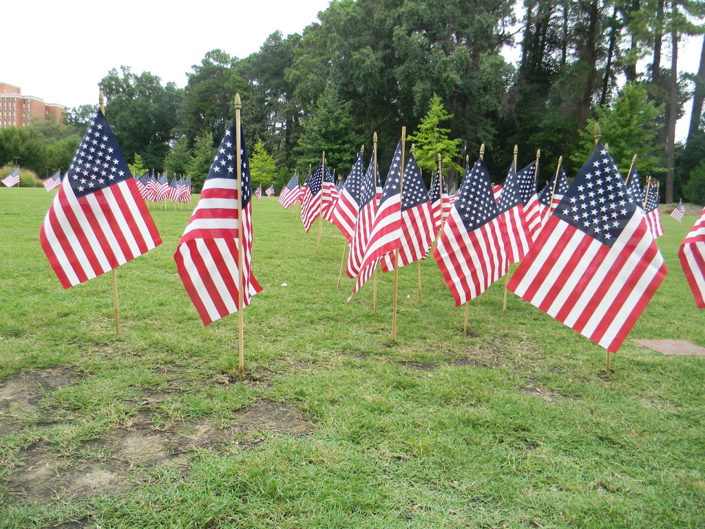 9-11 Flags at NC State by sfeldphotos