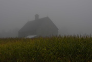 14th Sep 2017 - NF- SOOC- 2017  Day 14 Barn in the Mist