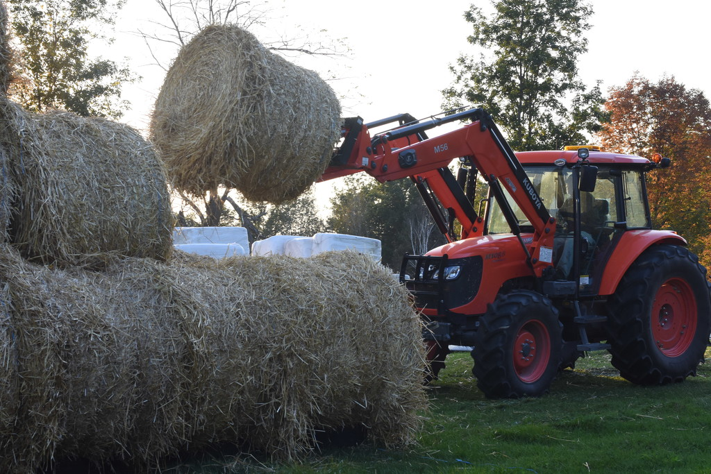 NF-SOOC-2017 Day 17 Stacking Straw by farmreporter