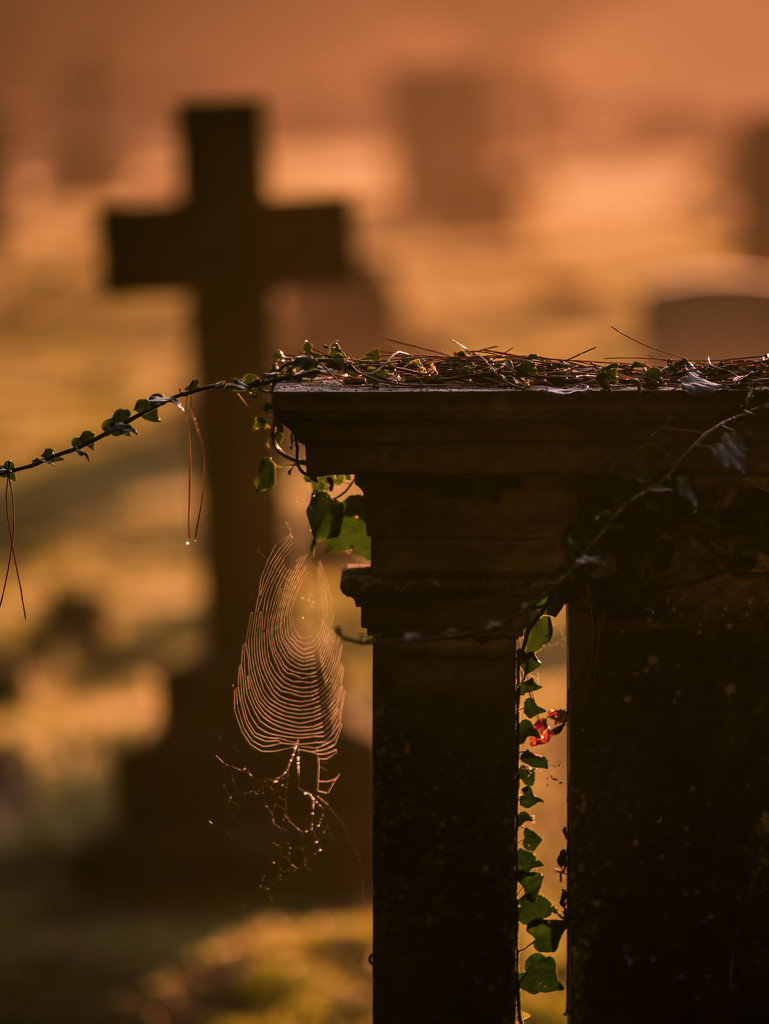 Life in the Graveyard by shepherdmanswife