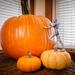 Multiplying Pumpkins