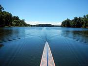 21st Jun 2017 - Sculling on Cedar Lake [Filler]